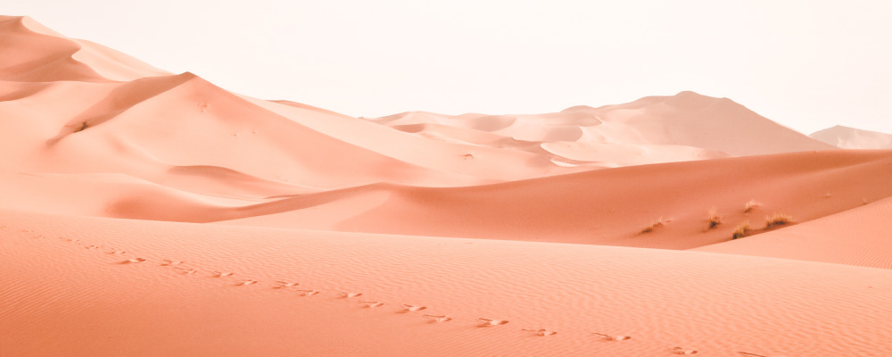 A lone line of human footprints amidst rolling sand dunes in a desert